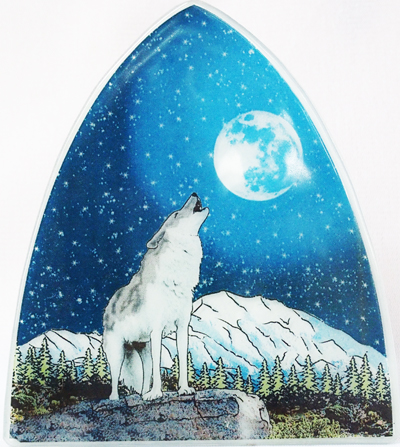 Wolf in Denali Nightlight