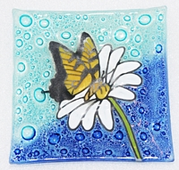 Yellow Tail Butterfly  Medium Plate
