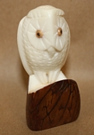 Medium Owl Tagua Carving
