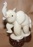 Large Elephant Tagua Carving
