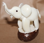 Medium Elephant Tagua Carving